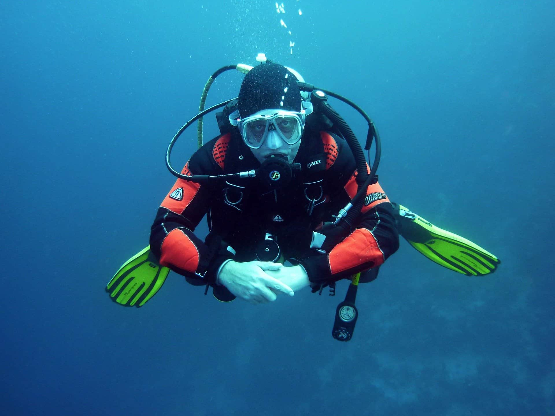 buceo guadalupe
