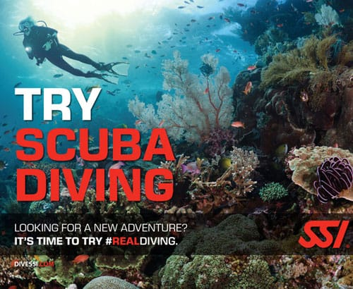 try scuba diving ssi