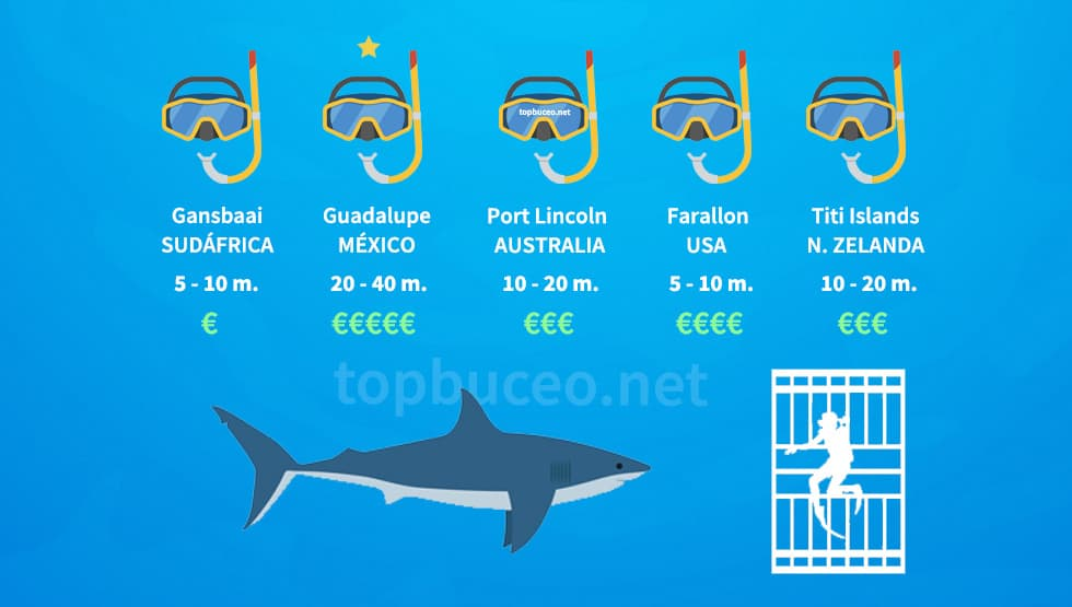Infografía comparativa lugares para bucear con tiburon blanco