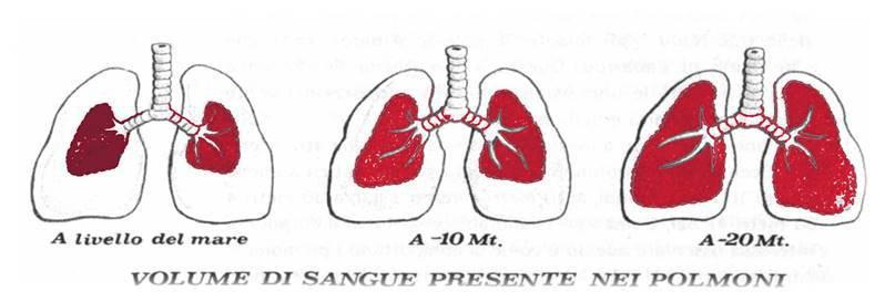 vasoconstriccion periferica