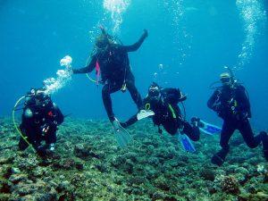 buceadores aprendiendo a bucear curso open water diver